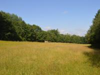 Prodej pozemku 14292 m², Strašín