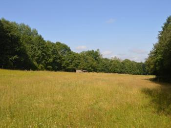 Prodej pozemku 1446 m², Dešenice