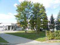 Základní škola v Záhoří. - Prodej domu v osobním vlastnictví 158 m², Olešná