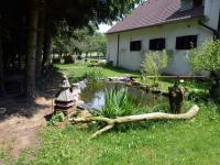 Malé jezírko i s rybami (Prodej zemědělského objektu 350 m², Černá v Pošumaví)