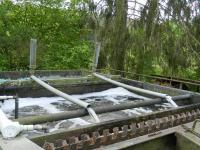 Čistička odpadních vod s elevátory. - Prodej hotelu 2809 m², Dobronice u Bechyně