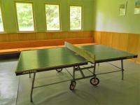 Klubovna se stolním tenisem. - Prodej hotelu 2809 m², Dobronice u Bechyně