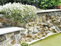 terasové úpravy na přední zahradě. - Prodej domu v osobním vlastnictví 551 m², Nezdice na Šumavě