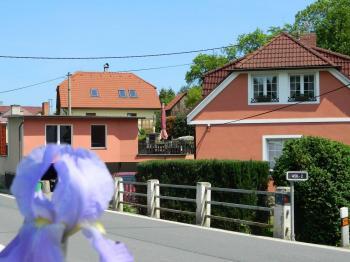 Příjezd k domu od Sušice a Kašperských Hor.. - Prodej domu v osobním vlastnictví 551 m², Nezdice na Šumavě