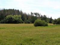 okolí - Prodej chaty / chalupy 36 m², Peč