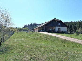 Prodej penzionu 750 m², Staňkov