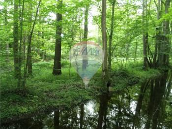 Prodej pozemku 2386 m², Tachov