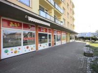Pronájem obchodních prostor 139 m², Litvínov