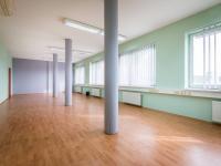open space  (Prodej komerčního objektu 2000 m², Strančice)