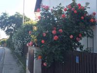 Prodej nájemního domu 380 m², Tehov