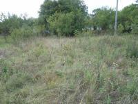Prodej pozemku 1613 m², Uherský Brod
