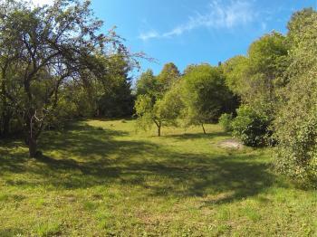 Prodej pozemku 2766 m², Brno