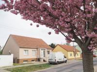 Prodej RD Cvrčovice - Prodej domu v osobním vlastnictví 203 m², Cvrčovice