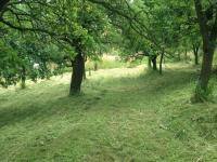 Prodej pozemku, 4582 m2, Vřesovice