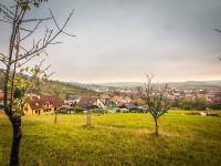 Prodej pozemku 3838 m², Pašovice