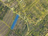 Prodej pozemku, 3838 m2, Pašovice