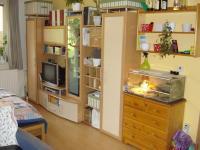 Pronájem bytu 1+kk v osobním vlastnictví 55 m², Kuřim