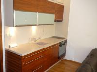 Pronájem bytu 2+kk v osobním vlastnictví 47 m², Brno