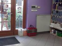 Pronájem obchodních prostor 53 m², Brno