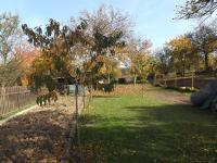 zahrada (Prodej domu v osobním vlastnictví 280 m², Petrůvka)