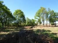 Prodej pozemku 2637 m², Zdětín
