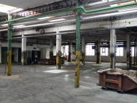 Pronájem komerčního objektu 800 m², Čelákovice