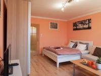 Pronájem bytu 1+1 v osobním vlastnictví 32 m², Praha 4 - Nusle