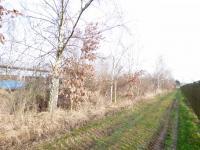 Prodej pozemku 3566 m², Vestec