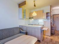 Kuchyně s obývací částí (Prodej bytu 2+kk v osobním vlastnictví 40 m², Praha 4 - Libuš)