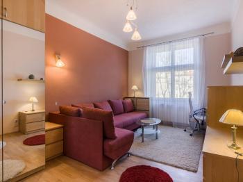 Prodej bytu 1+1 v osobním vlastnictví 44 m², Praha 2 - Vinohrady