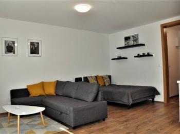 Obývací pokoj - Pronájem bytu 1+kk v osobním vlastnictví 41 m², Praha 9 - Čakovice