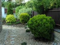Zadní část zahrady - Pronájem domu v osobním vlastnictví 190 m², Praha 6 - Lysolaje