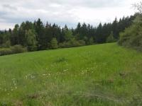 Prodej pozemku 12016 m², Čkyně