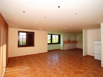 Obývací pokoj - Prodej domu v osobním vlastnictví 248 m², Psáry