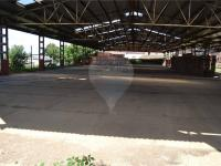 velké venkovní skladovací a manipulační plochy - Pronájem skladovacích prostor 5000 m², Dřínov