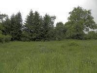 Prodej pozemku 31111 m², Krásné Údolí