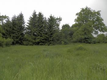Prodej pozemku 3111 m², Krásné Údolí