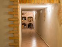 vinotéka (Prodej domu v osobním vlastnictví 512 m², Říčany)