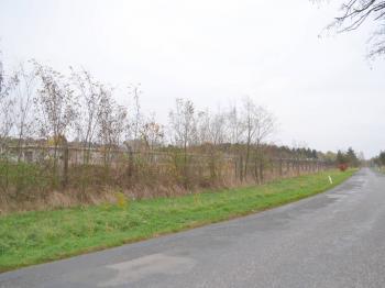 pohled na pozemek - Prodej pozemku 99534 m², Mcely