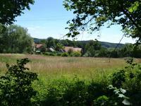 pohled na pozemek (Prodej pozemku 15804 m², Neveklov)
