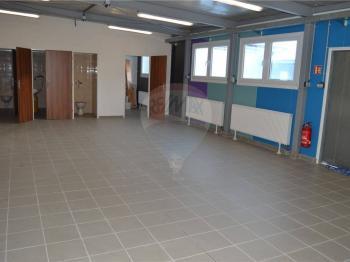 hala a zázemí - Pronájem skladovacích prostor 130 m², Těšany