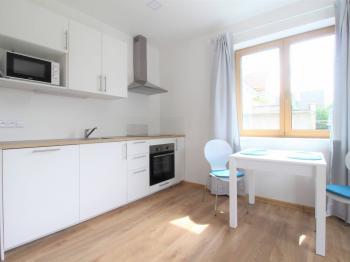 Pronájem bytu 1+1 v družstevním vlastnictví 35 m², Odolena Voda