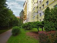 Pronájem bytu 2+1 v osobním vlastnictví 53 m², Praha 9 - Letňany