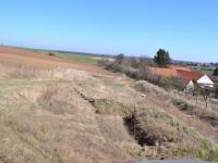 Pohled na pozemek ze zahradního domku (Prodej pozemku 4691 m², Klučov)