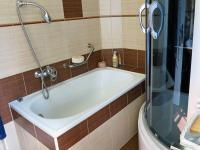 Koupelna (Prodej domu v osobním vlastnictví 245 m², Pohoří)