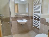 Koupelna s WC (Pronájem bytu 1+kk v osobním vlastnictví 29 m², Plzeň)