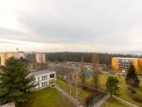 Výhled z bytu (Prodej bytu 3+1 v družstevním vlastnictví 60 m², Praha 4 - Kamýk)