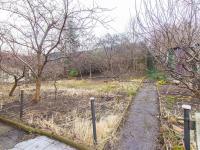 Pohled na zahradu (Prodej domu v osobním vlastnictví 163 m², Praha 6 - Ruzyně)