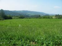 Prodej pozemku 26500 m², Pasohlávky