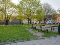 Okolí domu (Prodej domu v osobním vlastnictví 166 m², Brno)